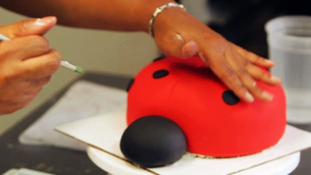 M. How to Add Polka Dots to a Ladybug Cake for a Kids' Party Promo Image