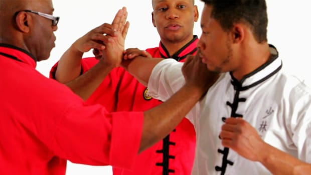 ZN. Step Palm Reverse Palm from Self-Defense Long Fist Form Promo Image