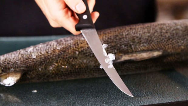E. How to Remove Scales from Fish Promo Image