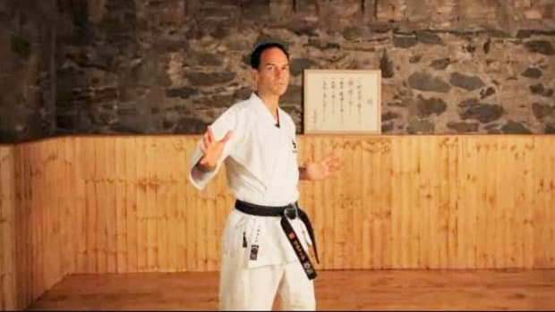 W. What Are the Major Styles of Karate? Promo Image