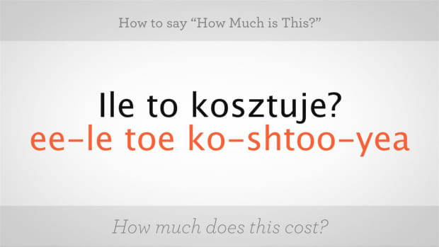 "V. How to Say ""How Much Is This"" in Polish Promo Image"