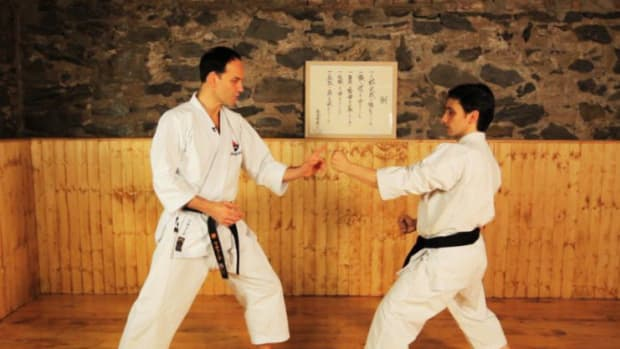 ZD. Can Anyone Do Karate? Promo Image