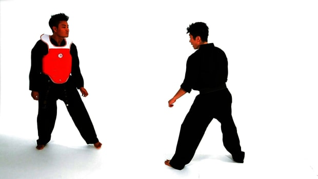 ZL. How to Do Taekwondo Sidestep Technique 2 Promo Image