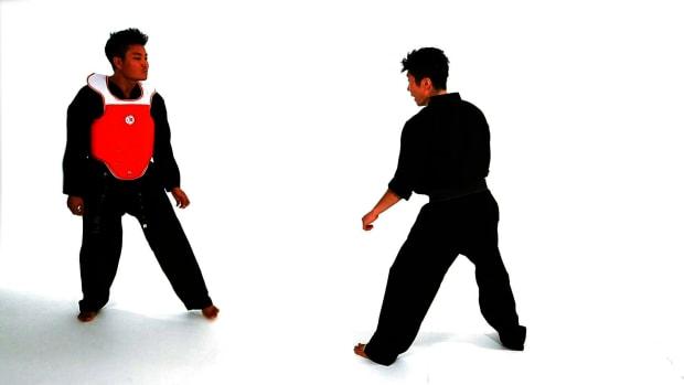 ZL. How to Do Taekwondo Sidestep Technique 2 Promo Image