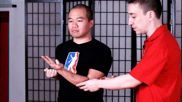 ZT. How to Do the First 3 Sets of Siu Nim Tau Form in Wing Chun Promo Image