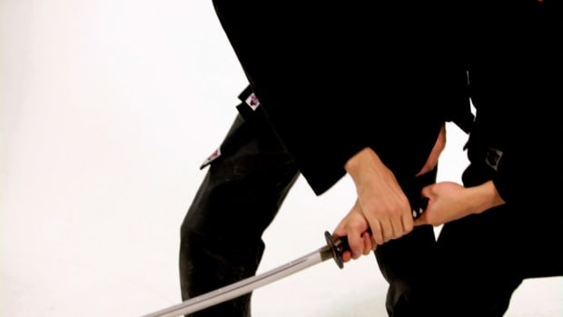 ZS. How to Defend against 2 Swords in a Sword Fight Promo Image
