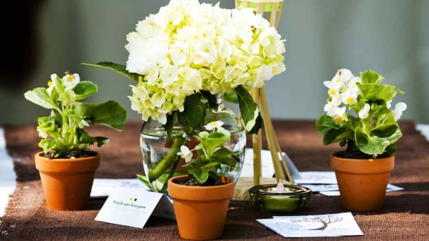 ZU. How to Design a Floral Arrangement for Your Wedding Promo Image