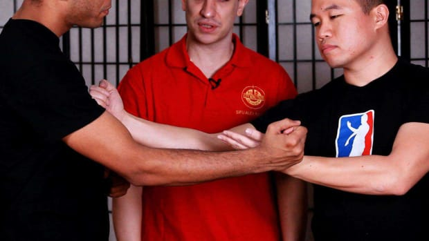 ZH. How to Do a Taan Da / Gang Da in Wing Chun Promo Image
