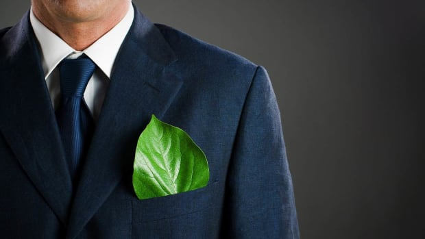 ZD. How to Make Your Business Eco-Friendly Promo Image