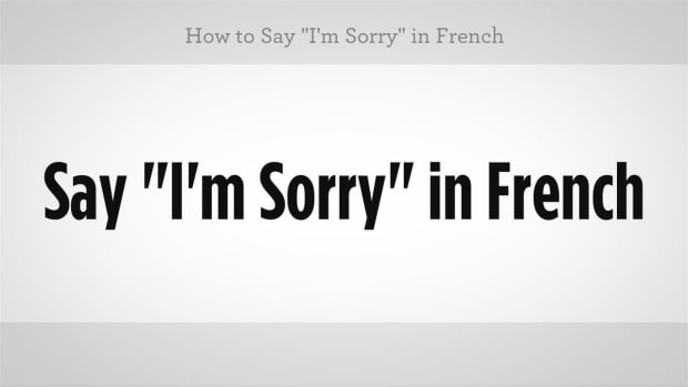 "ZZO. How to Say ""I'm Sorry"" in French Promo Image"