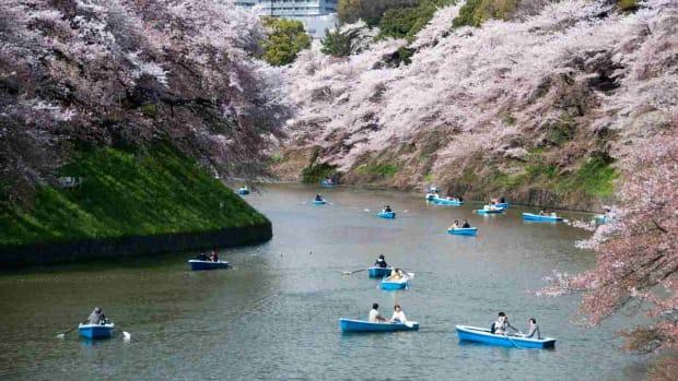 D. Best Time to Visit Tokyo Promo Image