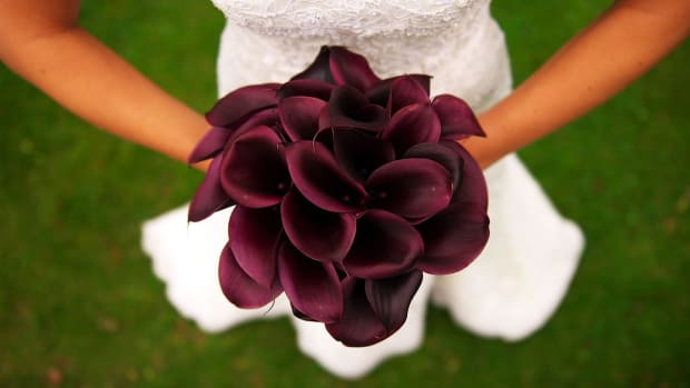 Y. 6 Tips for Picking the Perfect Bridal Bouquet Promo Image