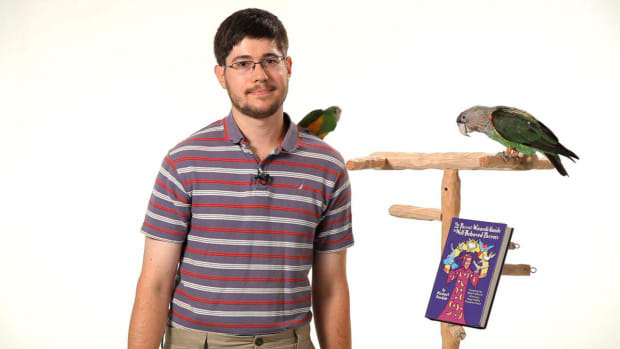 ZL. How to Train Your Parrot with Michael Sazhin Promo Image
