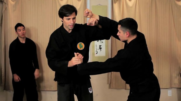 ZZZI. What Is the Difference between Ninjutsu & Karate? Promo Image