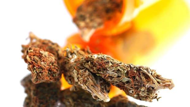 ZP. The History of Marijuana in Western Medicine Promo Image