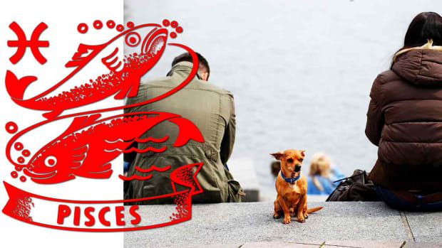 ZZZZI. How to Break Up with Pisces Promo Image