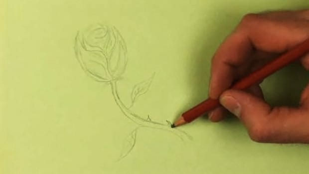 O. How to Draw a Rose Promo Image