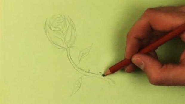 O. How to Draw a Rose Promo Image