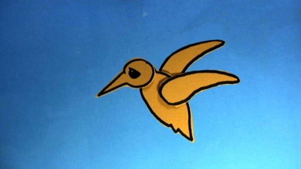U. How to Animate a Bird Flying Promo Image