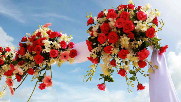 ZE. 6 Tips for Picking a Wedding Arch Decoration Promo Image