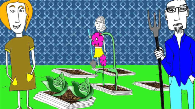 R. How to Start a Community Garden Promo Image