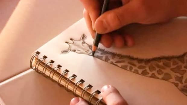 S. How to Draw Animals Promo Image