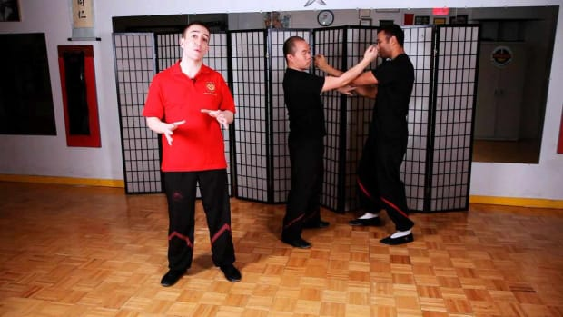 ZO. Basic Chi Sau Theory in Wing Chun Promo Image