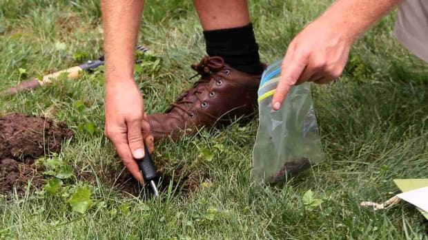 W. How to Take a Soil Test for Your Lawn Promo Image