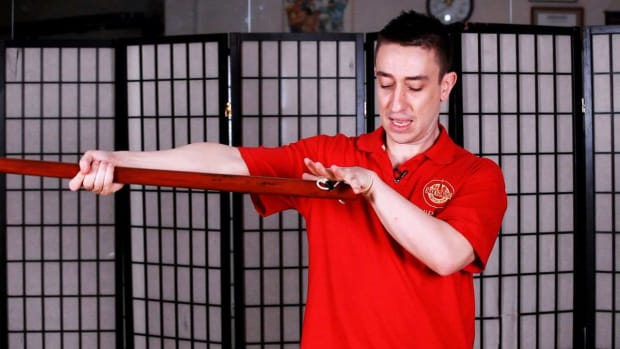 ZY. How to Do a Long Pole Grip in Wing Chun Promo Image