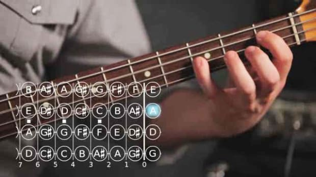 ZF. How to Do Roots & Fifths Exercises on Bass Guitar Promo Image