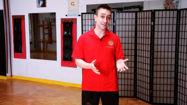 ZZA. How to Do Wing Chun with Alex Richter Promo Image