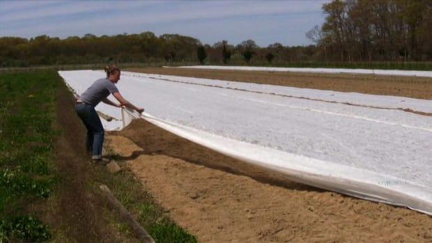 M. How to Practice Organic Farming Promo Image