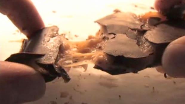 I. How to Make Peanut Butter Chocolate Bars Promo Image