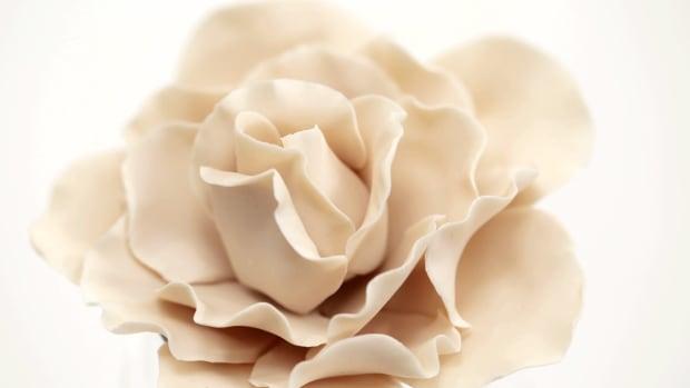 Lesson 2: Make Pretty Sugar Flowers — Fast! Promo Image