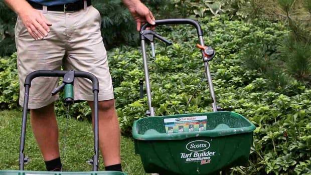 K. 6 Lawn Fertilizing Tips Promo Image