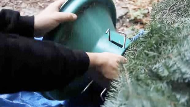 V. How to Remove a Christmas Tree from a Stand Promo Image