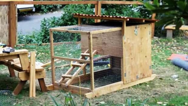 D. How to Build a Chicken Coop Promo Image