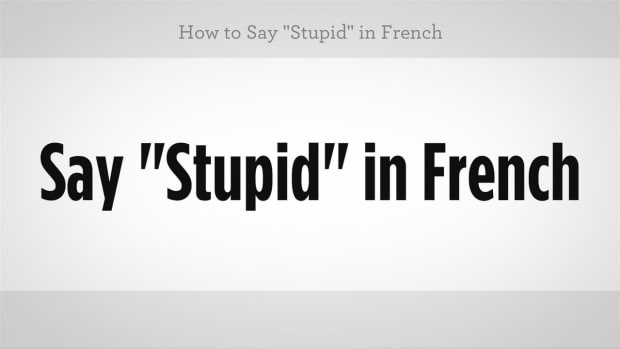 "ZZN. How to Say ""Stupid"" in French Promo Image"