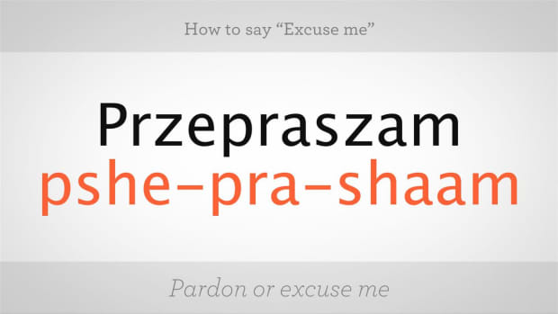 "L. How to Say ""Excuse Me"" in Polish Promo Image"