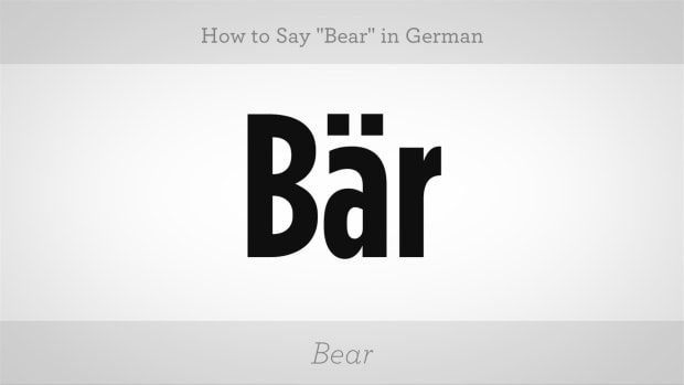 "ZP. How to Say ""Bear"" in German Promo Image"