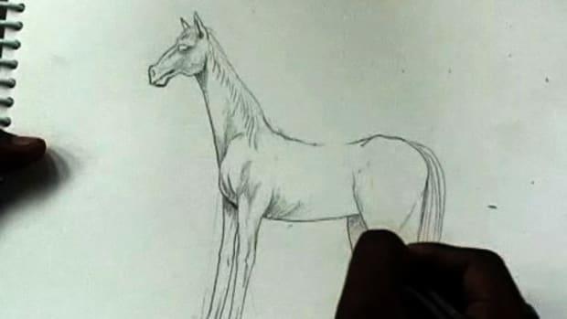 ZA. How to Draw Horses Promo Image