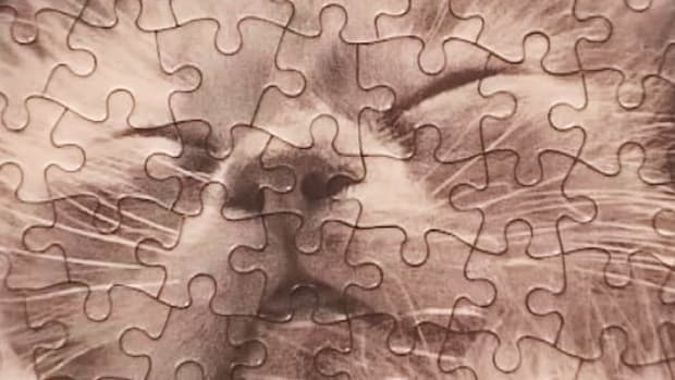D. How to Solve a Jigsaw Puzzle Promo Image