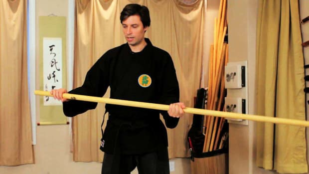 ZZ. How to Do Bo Furi Gata from Bojutsu Training in Ninjutsu Promo Image