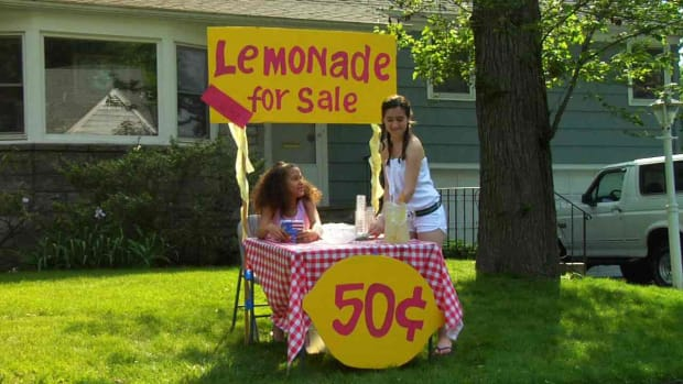 C. How to Start a Lemonade Stand Promo Image