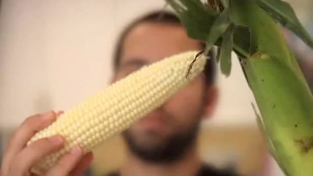 P. How to Microwave Corn on the Cob Promo Image