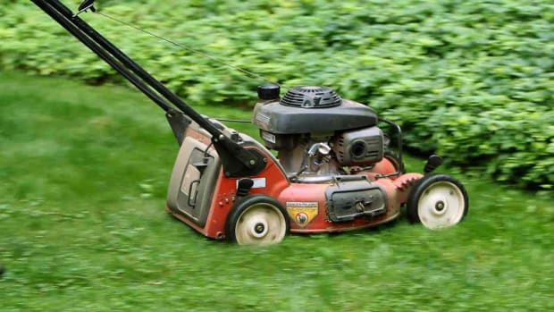 L. How to Mow Your Lawn Properly Promo Image