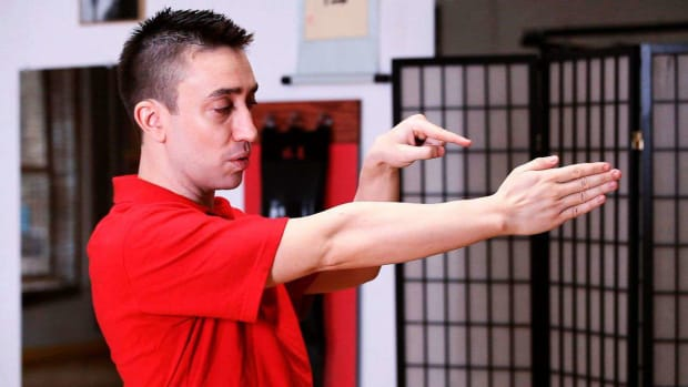 I. How to Do the Saam Bai Tze aka Saam Yiu Sau in Wing Chun Promo Image