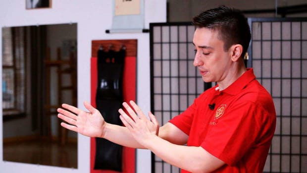 J. How to Do a Man Sau / Wu Sau aka On Guard in Wing Chun Promo Image