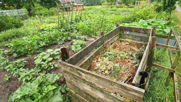 ZO. Home Composting Do's & Don'ts Promo Image