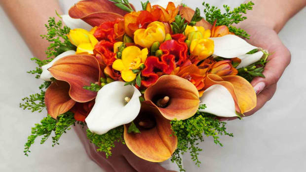 ZT. How to Plan a Floral Arrangement Promo Image